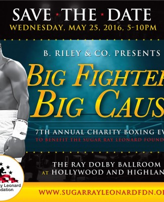 Big Fighters, Big Cause 2016