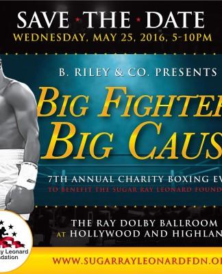 Big Fighters, Big Cause 2016